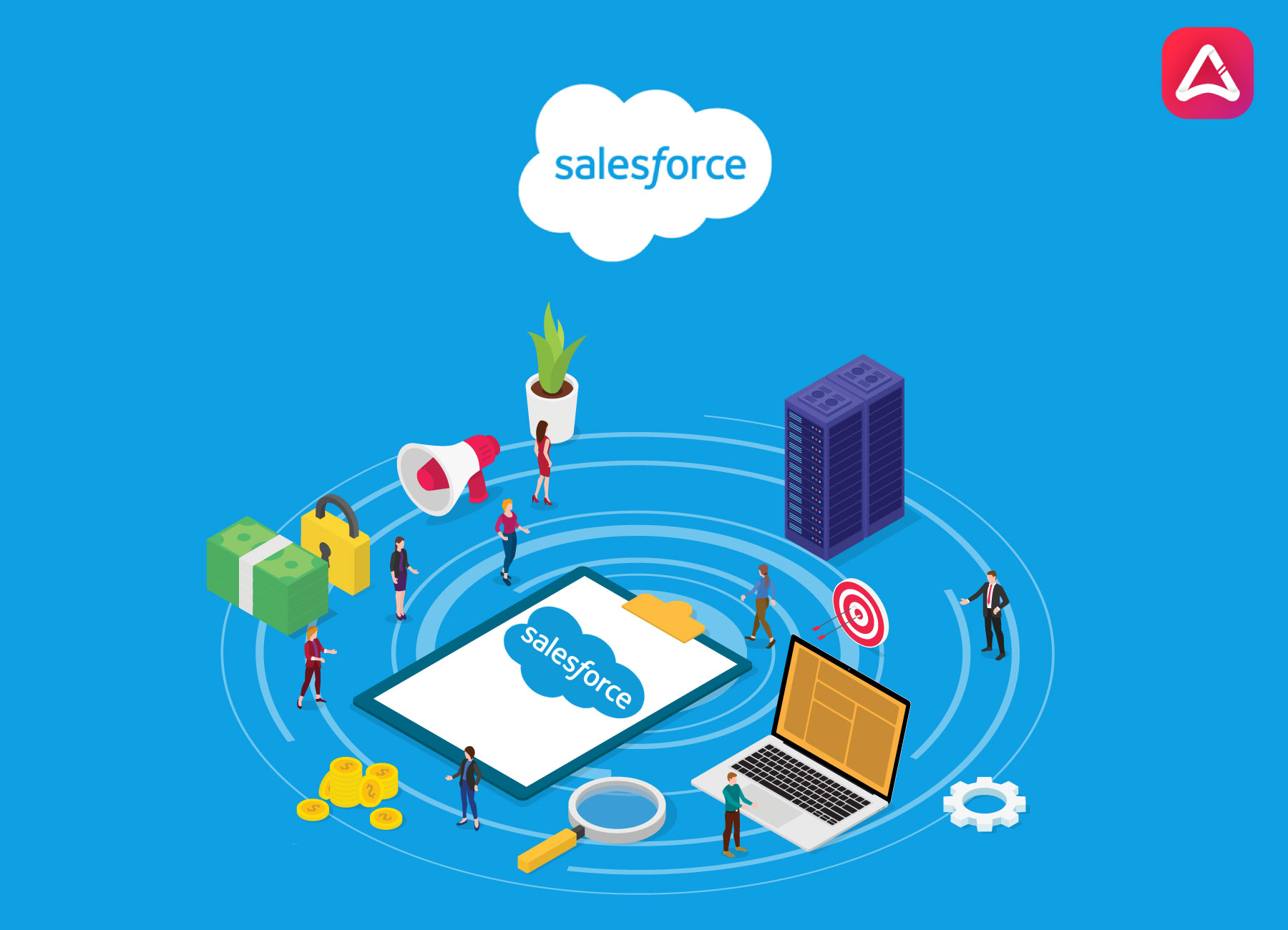 Salesforce Application